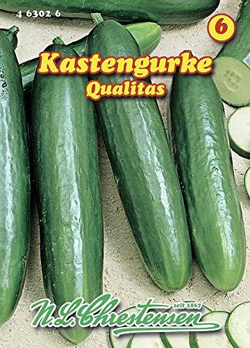 N.L. Chrestensen 463026 Kastengurke Qualitas (Kastengurkensamen)