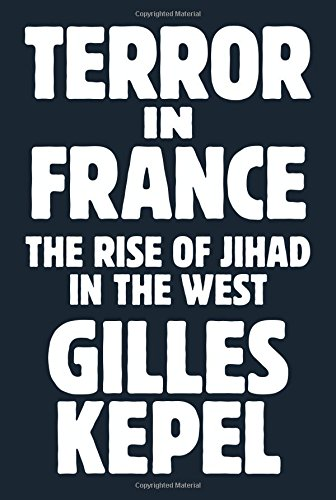 Image of Terror in France: The Rise of Jihad in the West (Princeton Studies in Muslim Politics (64))