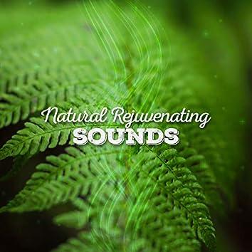 Natural Rejuvenating Sounds