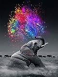 Orsit 5D Diamond Painting Kit de Peinture Bricolage Artisanat Maison Décoration Murale -L'éléphant(12x18inch/30x45CM)