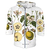 C COABALLA Quince Cydonia Oblonga Old Antique bothanical Print Quince,Women's Hooded Softshell Jacket Fruit M