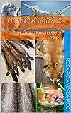 Pellicciaio conciatore: nozioni e tecniche - vol 1 Pellicceria: Conciatura di una pelle di volpe (Pellicceria, tassidermia, crani, mammiferi)
