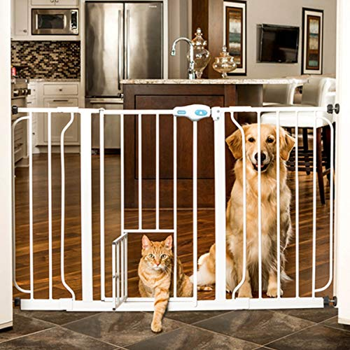 how to dog proof cat litter