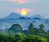 lunaprint Sunrise In The Jungles Sri Lanka Asia Home Decor