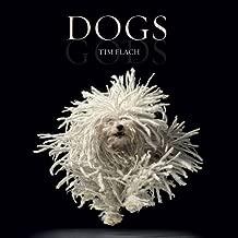 Dogs / Gods: Gods