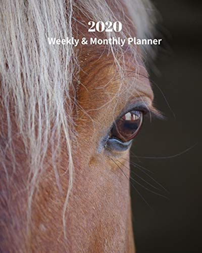 2020 Weekly and Monthly Planner: Brown Horse Eye - Monthly Calendar with U.S./UK/ Canadian/Christian/Jewish/Muslim Holidays– Calendar in Review/Notes 8 x 10 in.- Horse Animal Nature