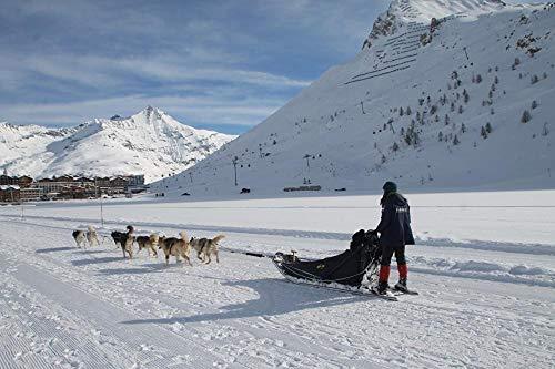 Lsping Puzzles 500 Piezas Invierno-Montañas-Perros-Nieve-Trineo-Correr-Sombra 52x38cm
