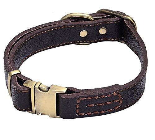Tellpet Leather Collar
