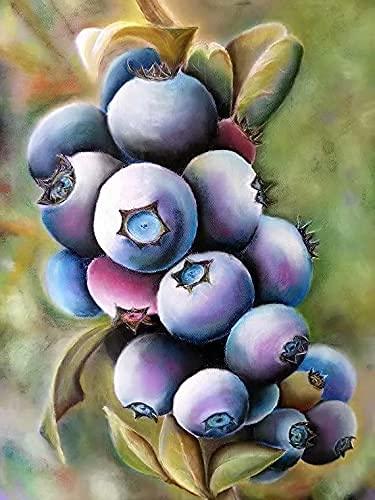 Maluj według numerów Borówka amerykańska zestaw do samodzielnego wykonania obrazu olejnego dla dzieci i płótno i farby akrylowe Bez ramki