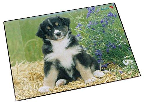 Läufer 46591 Schreibtischunterlage Hund Australian Sheperd, 53x40 cm, rutschfeste Schreibunterlage für Kinder, verschiedene Motive, mit transparenter Seitentasche