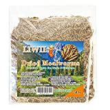 Dried Mealworms -5 LBS- 100% Natural Non GMO High Protein Mealworms -...