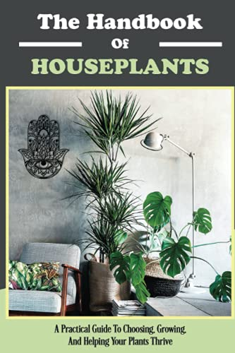Houseplants For Beginners,How To Choose Plants In Your Home,How To Grow House...