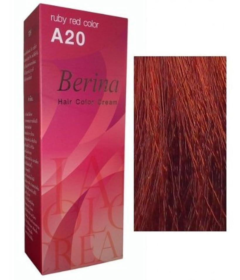 勘違いする差滞在Permanent Hair Colour Dye Berina Ruby Red by Berina