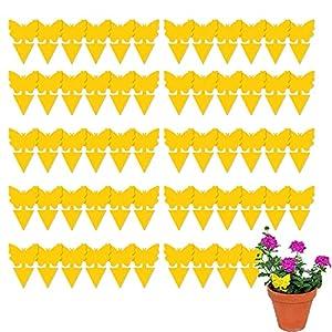 60 Piezas Trampa Moscas, Atrampa Moscas Insectos Amarillo de Doble Cara, Enchufables Trampas de Mosca Pegajosas Atrapa Moscas Exterior und Interior, Ideal para Plantas en el Balcón o en el Jardín
