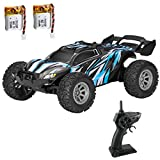1:32 RC Mini Car S658 2.4G 2WD Remote Control Racing Car Off Road Buggy High Speed with 2 Rechargeable Batteries Mini Vehicles with DIY Track Accessories Great Present for Kids Adults
