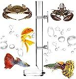 Tubo de Alimentación de Camarones Bandeja de Tubo de Acrílico Transparente del Alimentador Plato de Alimentación del Crystal Shrimp para Camarones Peces Cangrejos para Acuario 25cm