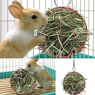 2 Shape Grass Feeder Tool Manger Food Ball Rabbit Hamster Grass Rack Hamster Cage Hanging Decor Hamster Toy Plating Pet Hay Ball