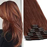 TESS Haarteile Echthaar Extensions Clip in Haarverlängerung Standard Weft Grad 7A Lang Glatt guenstig Remy Human Hair 8 Tressen 18 Clips 25cm-75g(#33 Auburn)