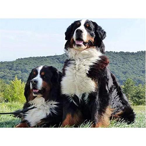Puzzle 1000 piezas Arte perro mascota perro imágenes HD puzzle 1000 piezas adultos Juego de habilidad para toda la familia, colorido juego de ubicación. Rompecabezas de juguet50x75cm(20x30inch)