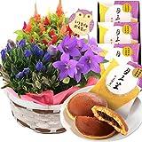 敬老の日 秋の3種寄せカゴ 文明堂 どら焼き 花 プレゼント ギフト