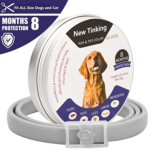 LAOYE Collare Antiparassitario Cane Collare Antipulci Cane Collari Antiparassitario per Cani e Gatti Collare Antipulci per Cani Collare Antizecche per Cani Offerte Cani 64.5cm