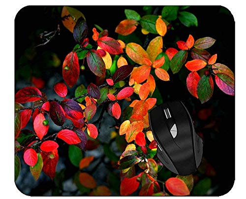 Alfombrilla de ratón de Oficina Hojas de Naranja Tierra Otoño Rojo Verde Alfombrilla de ratón para Juegos