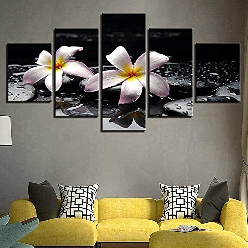 cuadro en lienzo impresión de 5 piezas - Enmarcado y listo para colgar Frangipani Rubra Flor Gota de agua Piedra Zen Fuente termal 150x80cm