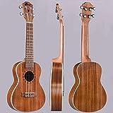 Immagine 2 winzz concerto ukulele migliore selezione