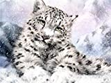 JXWH Animal leopardoDIY 5D Diamante Pintura Pintura de Diamante para Decoración de Pared Lienzo Pared Decoración40x50cm