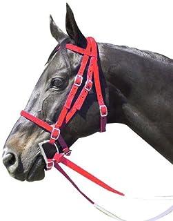 Intrepid International Nylon Race Horse Bridle