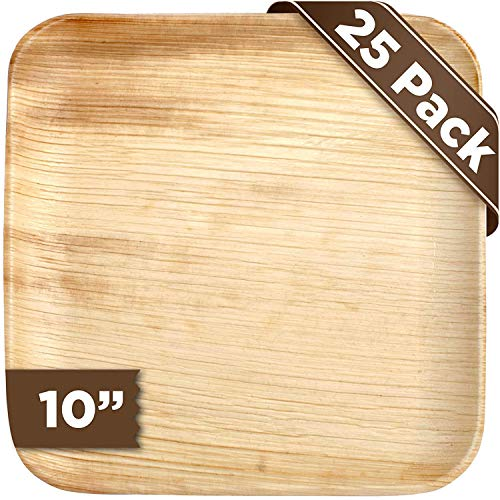 Disposable Biodegradable EcoFriendly Party Plates - EcoFriendly Palm Leaf Disposable Biodegradable Compostable Holiday Christmas Party Plates - Pack of 25, 10 Inch Square