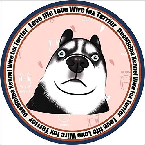 Miwaimao - Alfombrilla para perrera de perro con gamuza circular para primavera y verano, tamaño grande y pequeño para perros y gatos, tamaño XXL, diámetro circular de 1,2 m