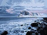 HUILIYI Pintura al óleo Niños Costa Glaciar Set de Bricolaje para Pintar por números Kit de Regalo para niños hágalo Usted Mismo Pintura 16 x 20 Pulgadas(sin Marco)
