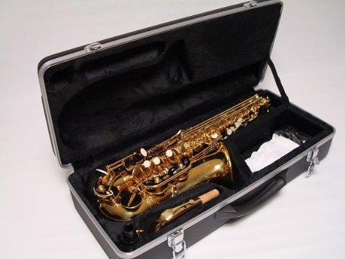 Professional Gold Alto Saxophone Brand New