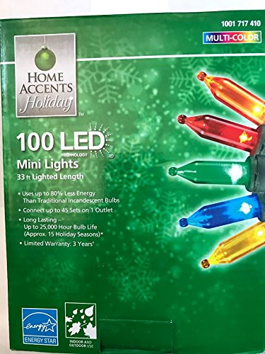 Home Accents Holiday 100-Light LED Multi-Color Mini Light Set
