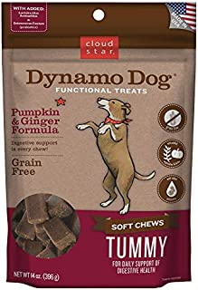 Cloud Star Dynamo Dog Tummy Treats – Soft & Chewy Probiotics Support for Dogs (14 oz. Pumpkin and Ginger) (20212)