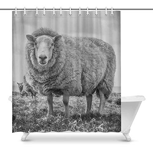 Luancrop Schließen Sie herauf das Schwarzweiss-Schaf-kühle Tier-wasserdichte Duschvorhang-Dekor-Gewebe-Badezimmer-Set mit Haken