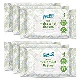 Marca Amazon - Presto! Papel higiénico húmedo y suave, fragancia de aloe vera, apto para verter al inodoro, paquete de 240 (40 pañuelos x 6 paquetes)