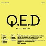 【Amazon.co.jp限定】Q.E.D (完全生産限定盤) (メガジャケ+『「Document of STAY HOPE」視聴カード』 付)
