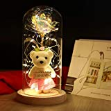 FTPRO Galaxy Rose in Glass Dome with Lights Infinity Rose Flower Shines Like a Enchanted Glass Rose Best Gifts for Women with Beauty and The Beast Rose