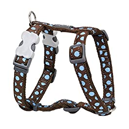 Red Dingo Desinger Dog Harness,