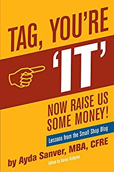 Tag You're It- Now Raise Us Some Money: Stories from the Small Shop Blog by [Ayda Sanver]