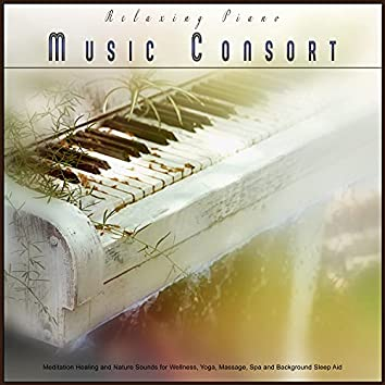 Relaxing Piano Music Consort: Meditation Healing and Nature Sounds for Wellness, Yoga, Massage, Spa and Background Sleep Aid