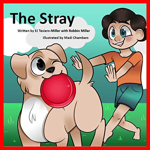 The Stray audiobook cover art