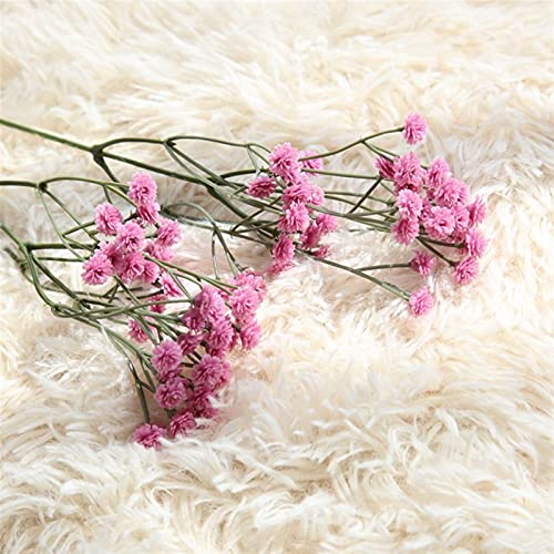 SJHQ Flor Preservada Bebé Aliento Flores Artificiales para decoración de Bodas Evento Fiesta Suministros Flores Decorativas guirnaldas Flor Artificial (Color : Rose Red)