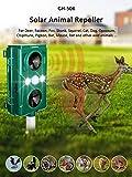 8. Chanshee Newest Two Sound Wave Speakers Solar Animal Repellent with Smart Mode Scares Away Cats, Dogs, Squirrels, Deer, Raccoon, Groundhog, Skunk,Birds etc