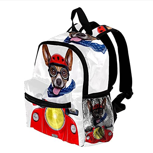 HEOH Mochila informal ligera feliz, moto, perro, con, casco