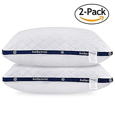 HOMEIDEAS Bed Pillows for Sleeping - (2 Pack Queen Size) - Super Soft Down-Alternative Luxury Hotel Fluffy Pillows,Three-Dimensional Shape, Dust Mite Resistant & Hypoallergenic, NO FLAT!