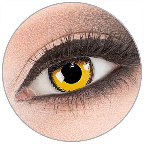 Farbige gelb 'Lunatic Sun' Kontaktlinsen von 'Evil Lens' zu Fasching Karneval Halloween 1 Paar gelbe Crazy Fun Kontaktlinsen mit Kombilösung (60ml) + Behälter in Topqualität ohne Stärke