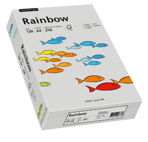 Papyrus 88042810 Druckerpapier Rainbow 120 g/m², A4 250 Blatt grau